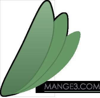 mange 3 web consultancy services logo